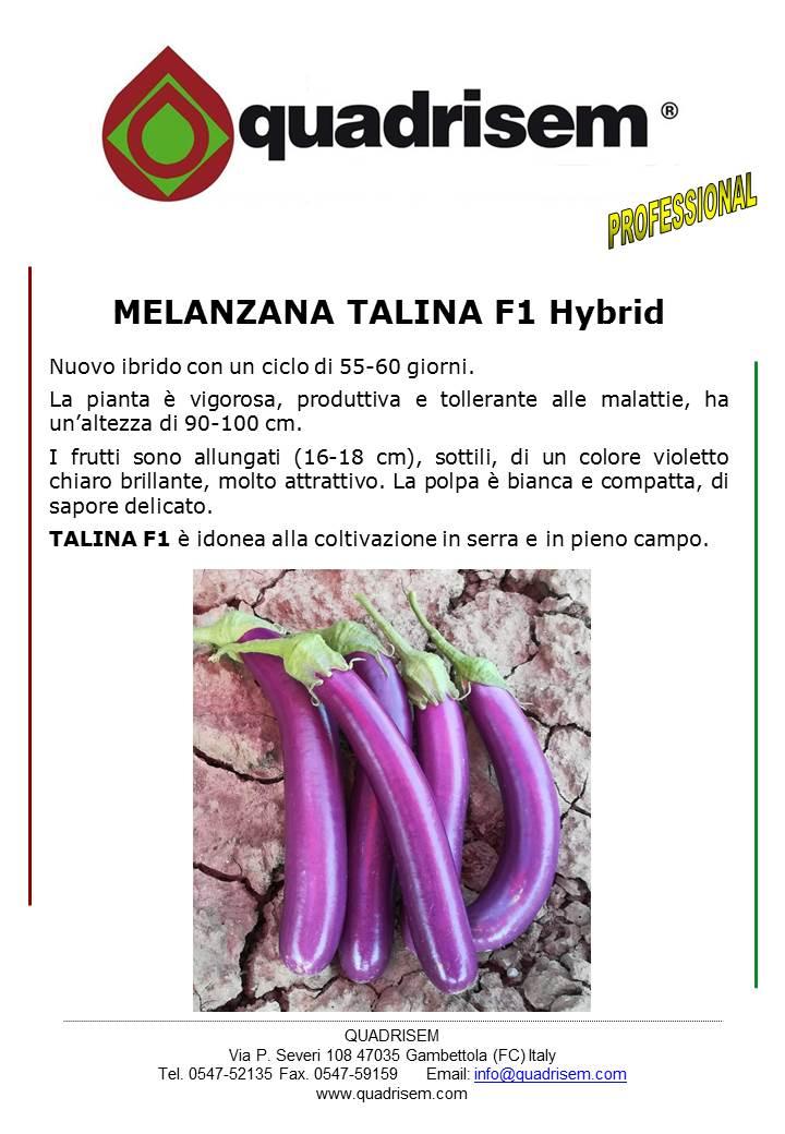 SCHEDA TECNICA Q MELANZANA TALINA F1 Hybrid